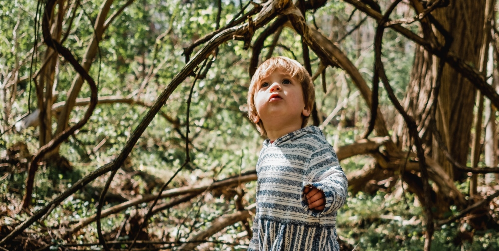child exploring a forest